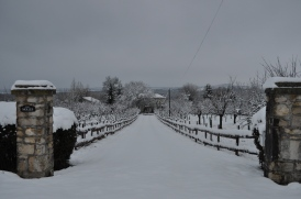 A white Christmas at Molles